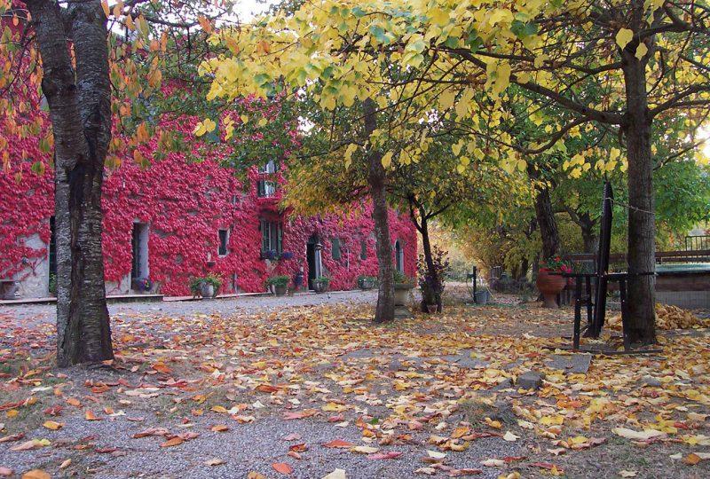 Casanuova _autunno