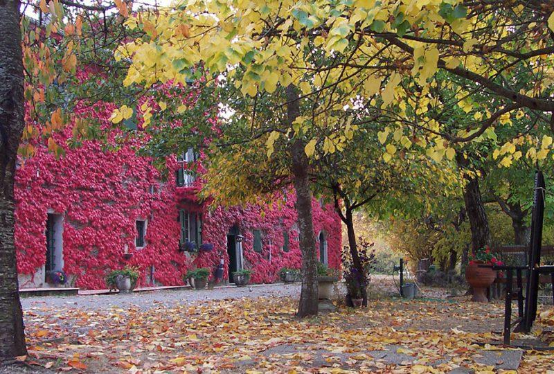 Casanuova_autunno