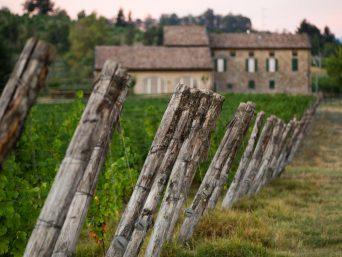 casale_delle_vigne_esterno