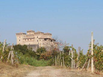 vigna Torrechiara Lamoretti