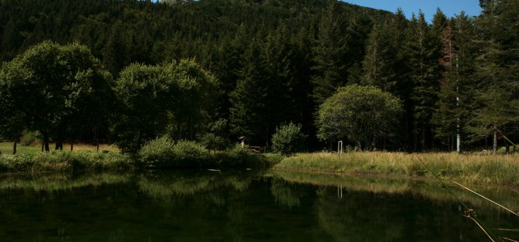 Parco 100 laghi