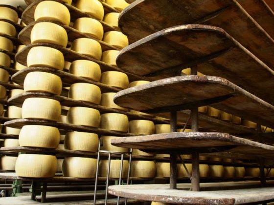 Agricola Guareschi scalere legno