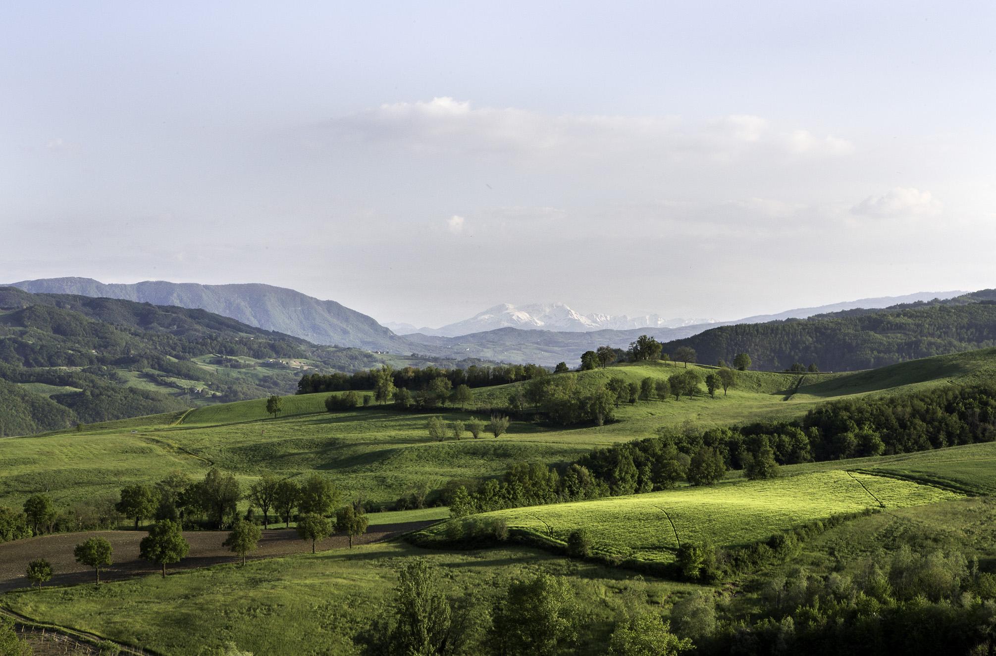 Le colline di Parma: dove nascono i grandi prodotti