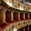 Terra_viaggi_nella_biodiversità_teatro_regio
