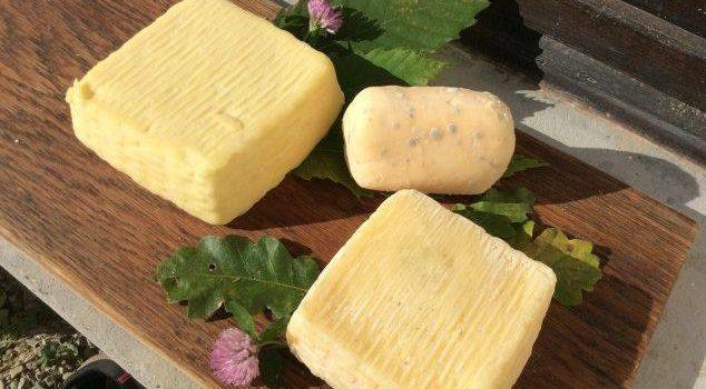 formaggi Mercatiamo