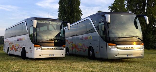 andromeda bus noleggio_pullman