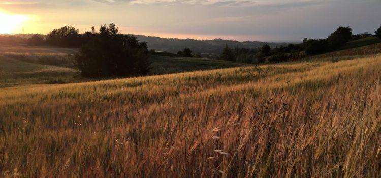 ramazzotti antonella tramonto collina